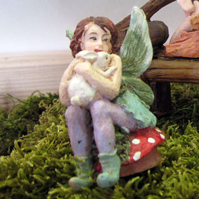 Toadstool Fairy-0