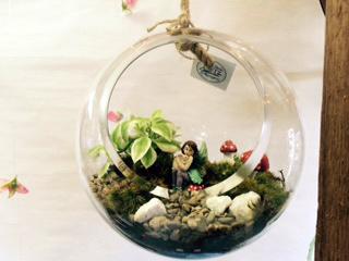 Hanging Globe Terrarium Kit-0