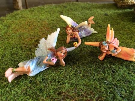 Fairy Trio-0